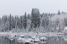 Snowy Canadian Landscape