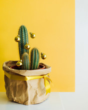 Cactus Decorated With Gold Bau...