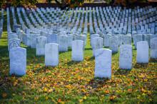 Arlington National Cemetery In Late Autumn