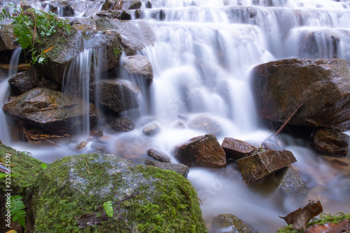 Wall Murals Forest river beautiful smoothly flowing water at Mea Kampong waterfall, Chaingmai provice, Thailand. Long exposure, close up