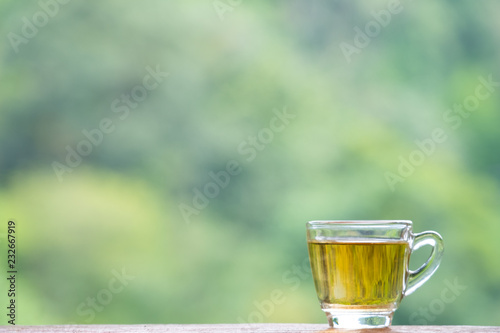 Foto op Plexiglas Thee a glass cup of hot tea. green nature forest background. look like healthy and fresh
