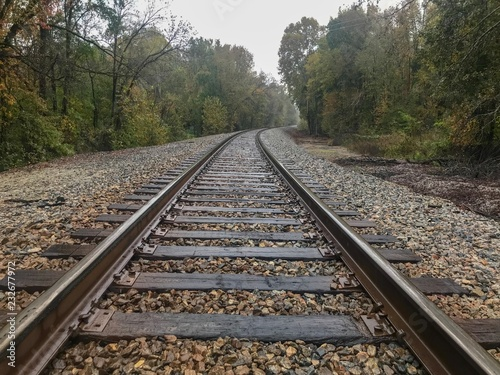 Poster Voies ferrées Train tracks in autumn forest on rainy day 1