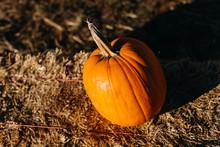 Lone Pumpkin On Hay Bale