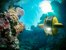 Underwater Robot Explores The ...