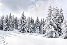 Winter Landscape Of Mountains ...