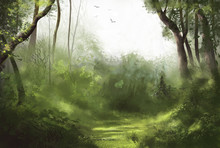 Forest Illustration Of Cloudy ...