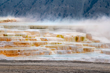 Mammoth Hot Springs And Terrac...