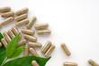 Leinwandbild Motiv Herb capsule, Nutritional Supplement