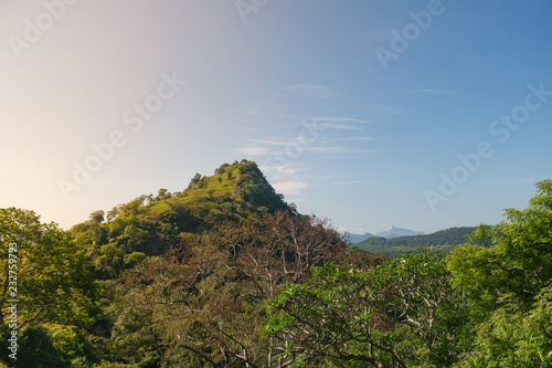 Tuinposter Asia land Beautiful view of Sri Lanka. Green landscape with mountain in Asia.
