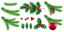 Branch Of Pine Tree With New Year And Christmas Toy, Twig Of Fir Tree With Cone, Holly Berry. Mistletoe Fruits And Pinecone, Ilex And Spruce. Winter Holidays And Celebration, Festive Theme