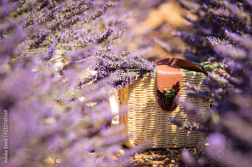 Foto op Aluminium Lavendel Sac et chapeau dans la lavande de Valensole