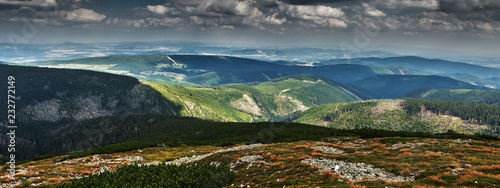 Fototapeta Panorama of hills covered with green forest obraz