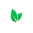 Leaf Icon, vector logo. Eco nature healthy concept. Green logotype natural plant symbol. Sign design for web site, mobile app. Element ecology bio organic illustration