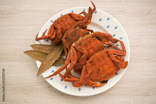 Fotografía  Cooked crabs on a plate accompanied by bay leaves