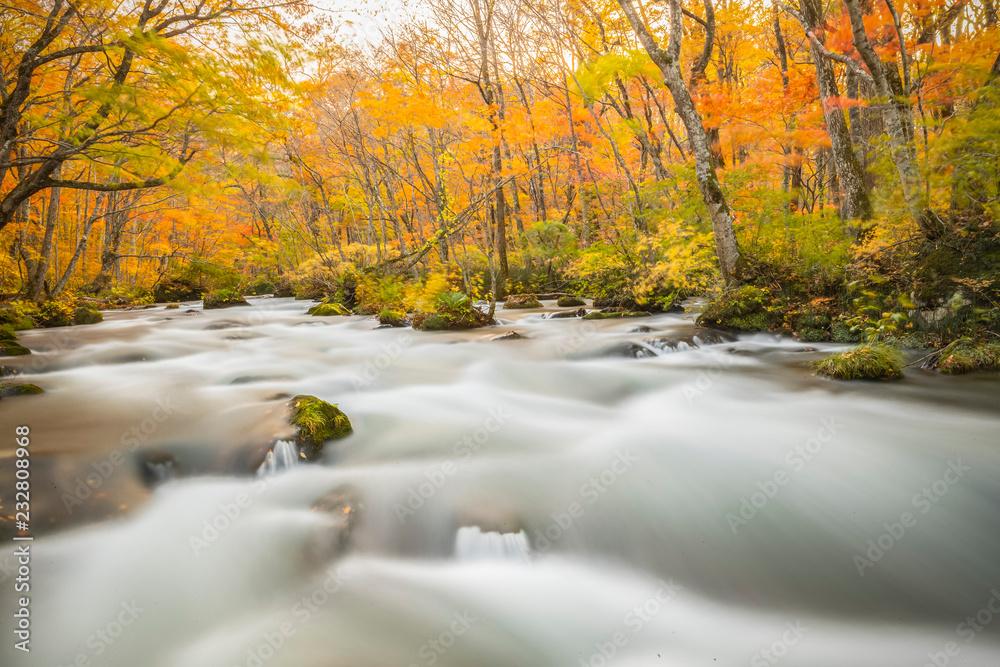Oriase stream valley in autumn at Aomori prefecture, Japan