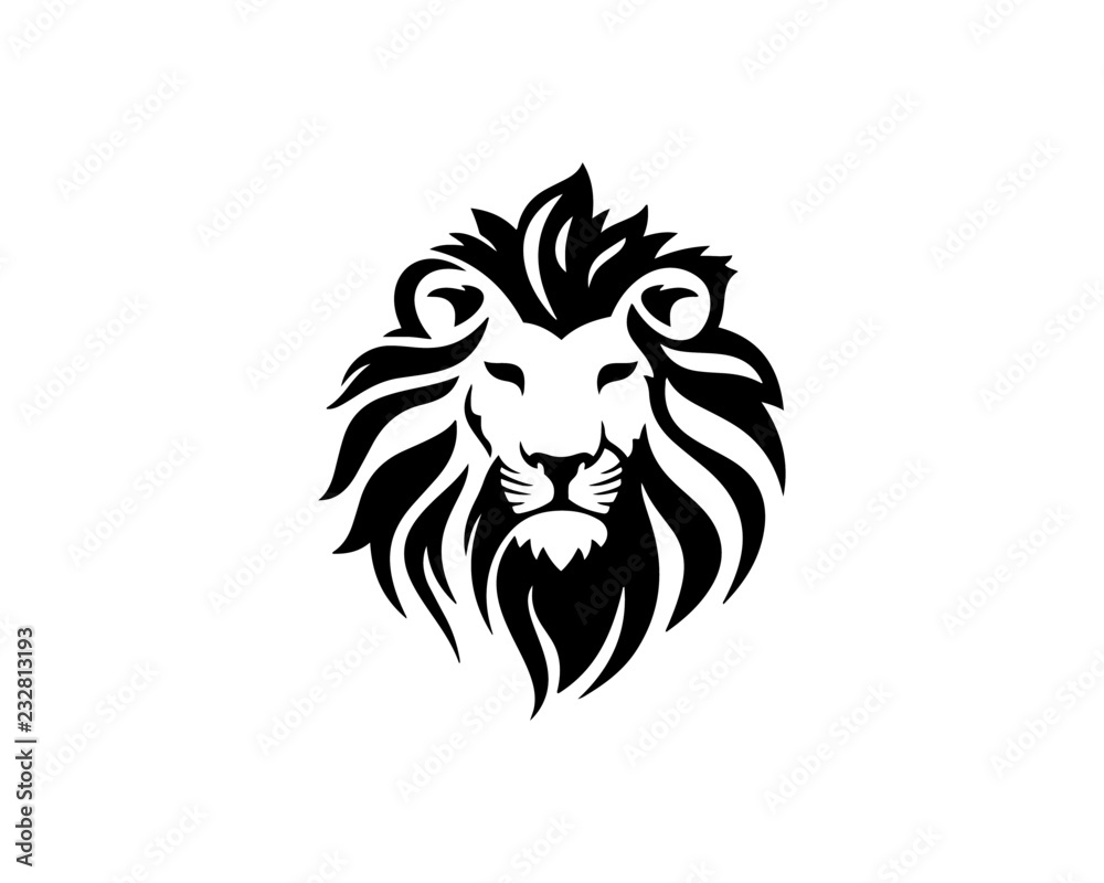 Fototapeta lion 12