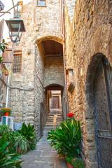 Fototapeta na wymiar  Viterbo medieval center