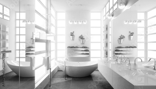 Contemporary Bathroom Adaptation