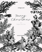 Christmas Card In Vintage Style. Hand Drawn Botanical Illustration With Cardinal Bird, Evergreen Plants And Cones. Greeting Template For Winter Holidays.