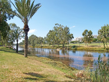 View Of The Yarkon River In Summer Day. Tel Aviv, Israel