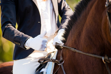 Girl rider's hand showing thumb up. Horse theme