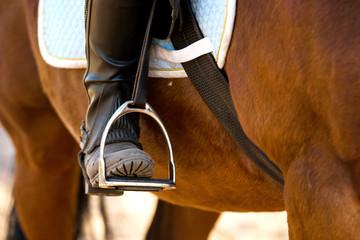 Foot in horse stirrup, close-up.