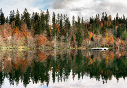 Poster Morning with fog fall color forest and foliage landscape surround an idyllic mountain lake in the Alps of Switzerland on a late autumn day with reflections in the water and a wooden swimming raft in the center