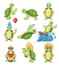 Collection Of Turtles Cartoons...