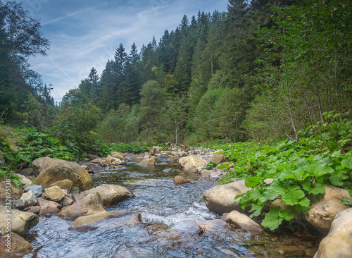 Foto op Aluminium Rivier River in mountains with rocks, green grass on riverside. Mountain landscape, beautiful sky, clouds. Idea for outdoor activities, travel .