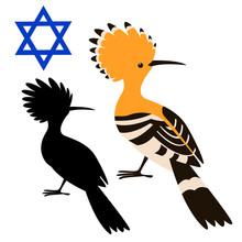 Hoopoe Bird  Vector Illustrati...