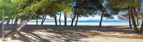 Puerto de Alcudia beach