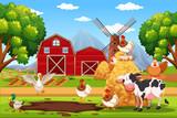 Animal at the farm