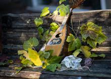Vintage Mandolin On A Wooden B...