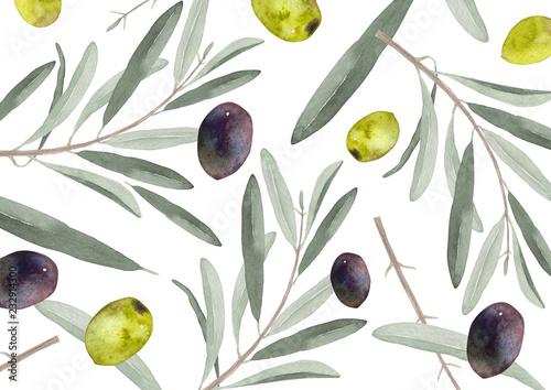 Fotografía オリーブの葉と果実 水彩画背景