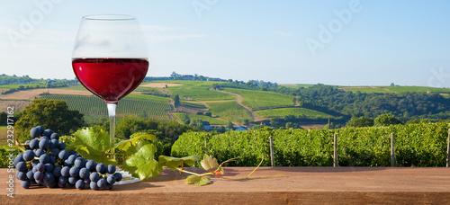 Verre de vin rouge sur paysage de vigne