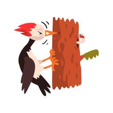 Cute Woodpecker Sitting On A T...