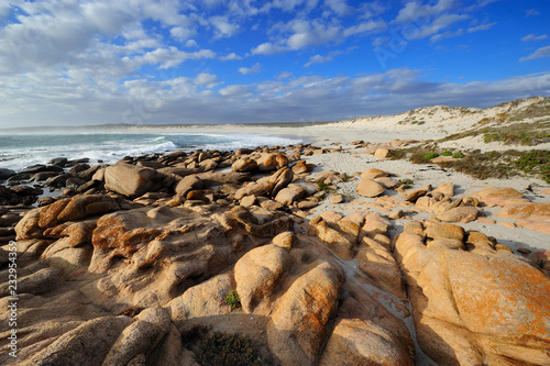 Fotografia, Obraz  Atlantic ocean in the Namaqualand National Park