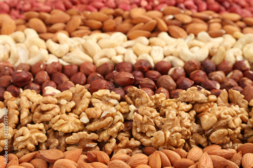 Cuadros en Lienzo mixed nuts laid out in stripes