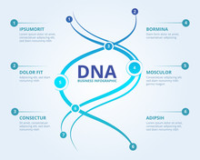Dna Infographics. Spiral Human Biology Structure Vector Medical Scientific Concept With Place For Your Text. Illustration Of Dna Chemistry Information Infographic Structure Illustration