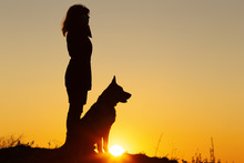 Silhouette Profile Of Young Woman Ang German Shepherddog Looking In The Distance At Sunset, Pet Sitting Near Girl's Leg On The Field, Concept Of Harmony Human And Nature
