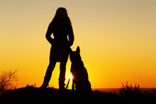Silhouette Woman Walking With A Dog In The Field At Sunset, A Girl In An Autumn Jacket Standing Near Her Pet On Nature