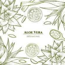 Vector Frame With Aloe Vera. H...