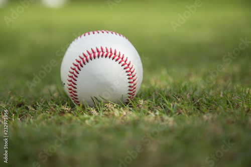 Papiers peints Azalea Baseball on green grass