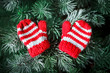 Merry Christmas and happy New year. Small knitted mittens on the Christmas tree.