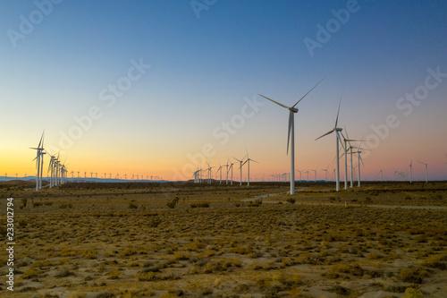 Fotografie, Obraz  wind turbines in field at sunset