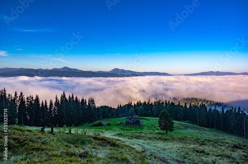 Fotografia  Fog in the carpathians