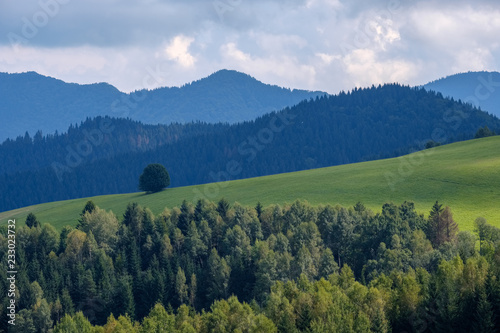 Fotobehang Khaki western carpathian Tatra mountain skyline with green fields and forests in foreground