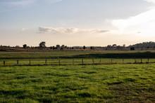 Green Farmland In The Lueneburger Heath, Germany