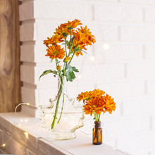 Large And Small Bouquets Of Orange Chrysanthemums In Vases In The Autumn Bright Home Interior. Comfort And Beauty At Home