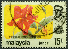MALAYSIA - 1979: Shows Hibiscus Rose And Sultan Ismail Of Johor (1895-1981), Series Flowers